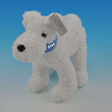 Hondje wit met halsband